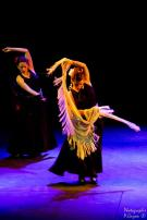 Les Danses du Soleil 2014